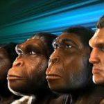 تکامل انسان به کجا ختم می شود؟ مگر نه این است که انسان هر چه تکامل یابد ، به زندگی خود پایان می دهد؟